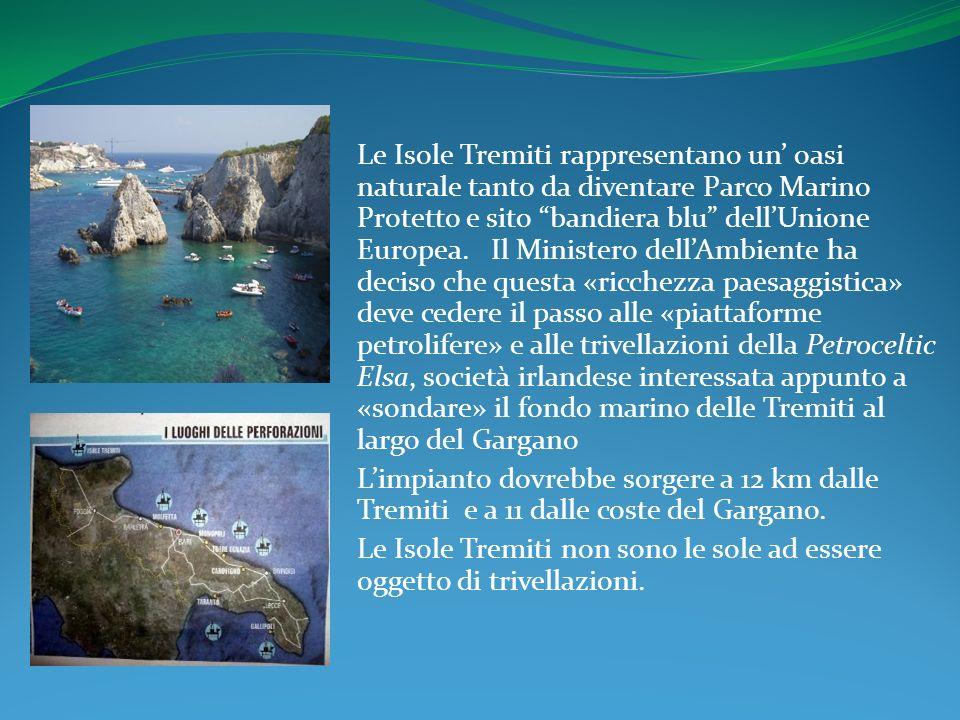 Le Isole Tremiti rappresentano un oasi naturale tanto da diventare Parco Marino Protetto e sito bandiera blu dellUnione Europea.