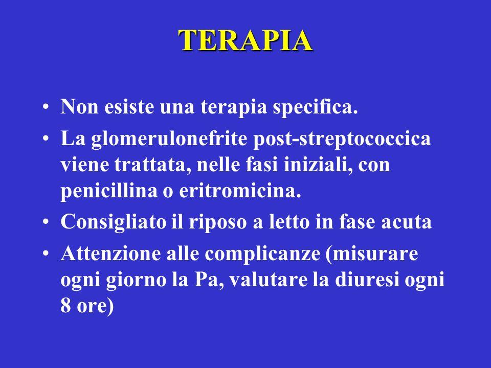 TERAPIA Non esiste una terapia specifica. La glomerulonefrite post-streptococcica viene trattata, nelle fasi iniziali, con penicillina o eritromicina.