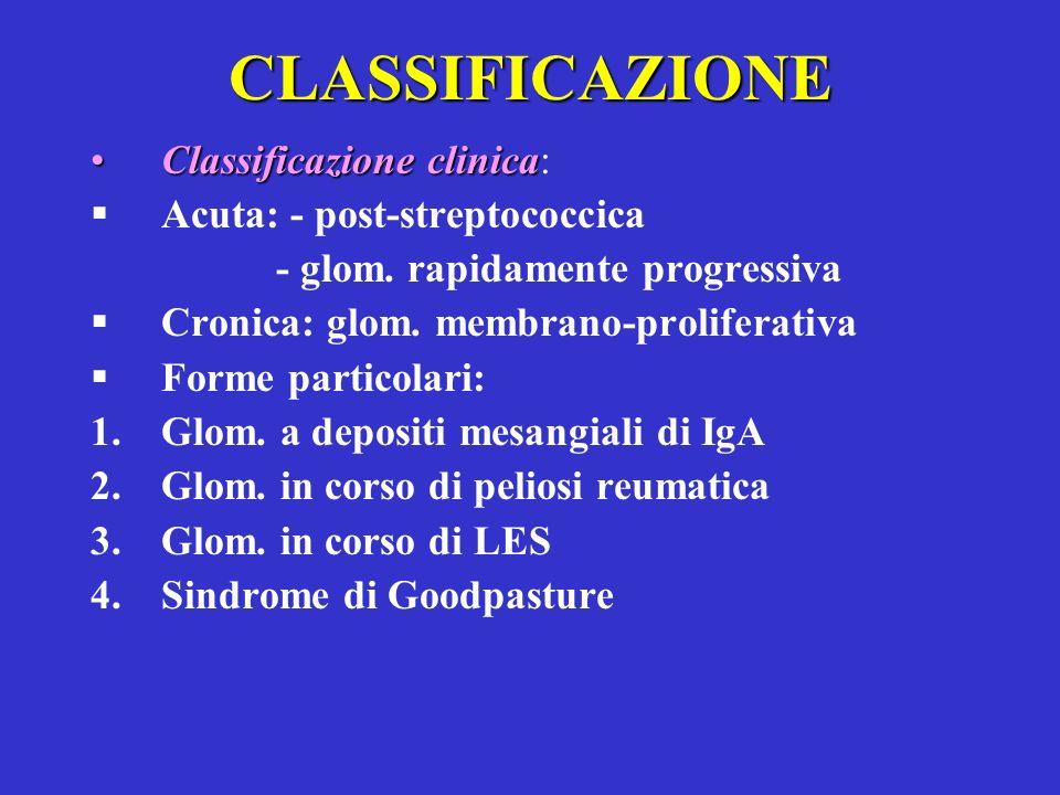 CLASSIFICAZIONE Classificazione clinicaClassificazione clinica: Acuta: - post-streptococcica - glom. rapidamente progressiva Cronica: glom. membrano-p