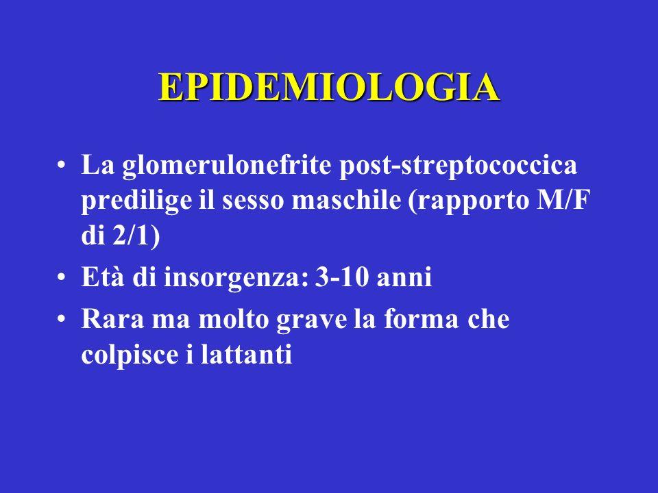 EPIDEMIOLOGIA La glomerulonefrite post-streptococcica predilige il sesso maschile (rapporto M/F di 2/1) Età di insorgenza: 3-10 anni Rara ma molto gra