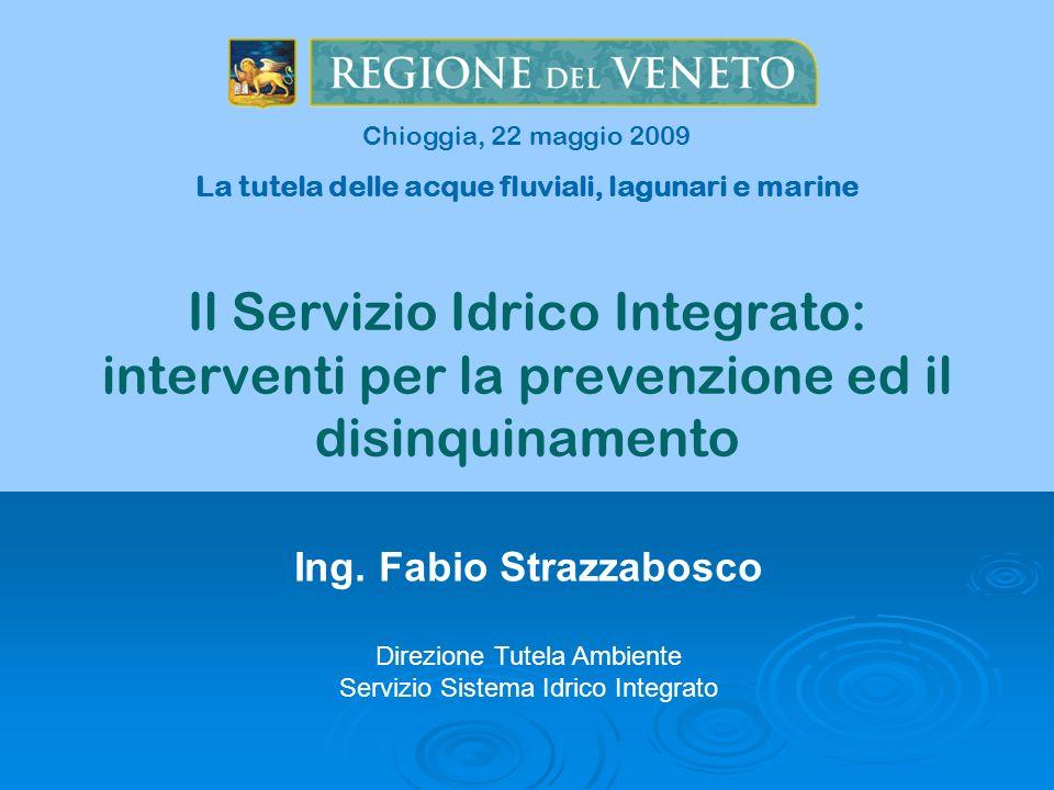 Il Servizio Idrico Integrato: interventi per la prevenzione ed il disinquinamento Ing. Fabio Strazzabosco Direzione Tutela Ambiente Servizio Sistema I