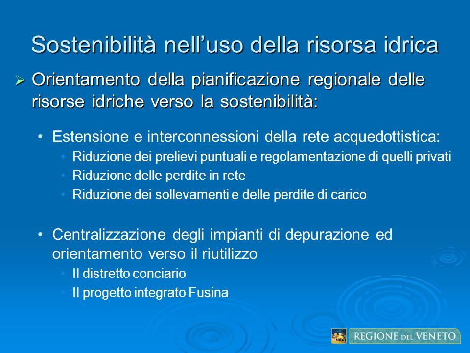 Sostenibilità nelluso della risorsa idrica Orientamento della pianificazione regionale delle risorse idriche verso la sostenibilità: Orientamento dell