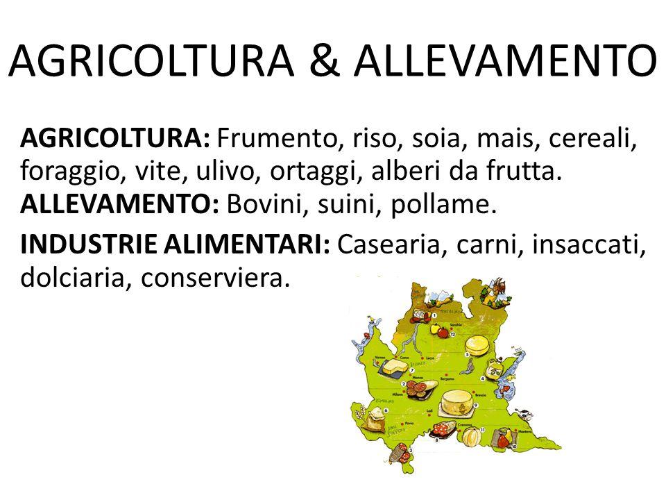 AGRICOLTURA & ALLEVAMENTO AGRICOLTURA: Frumento, riso, soia, mais, cereali, foraggio, vite, ulivo, ortaggi, alberi da frutta.