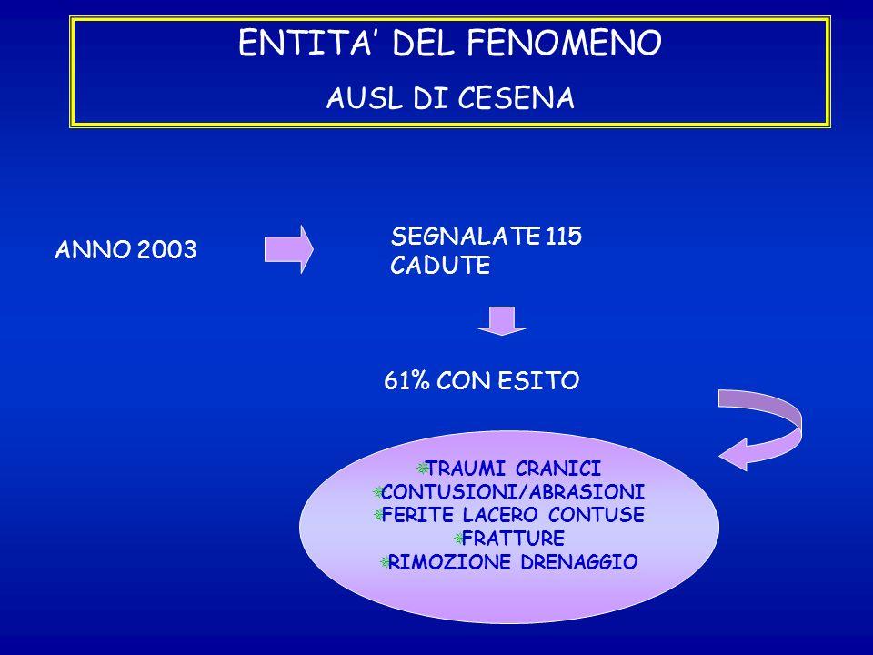 ENTITA DEL FENOMENO AUSL DI CESENA ANNO 2003 SEGNALATE 115 CADUTE 61% CON ESITO TRAUMI CRANICI CONTUSIONI/ABRASIONI FERITE LACERO CONTUSE FRATTURE RIM