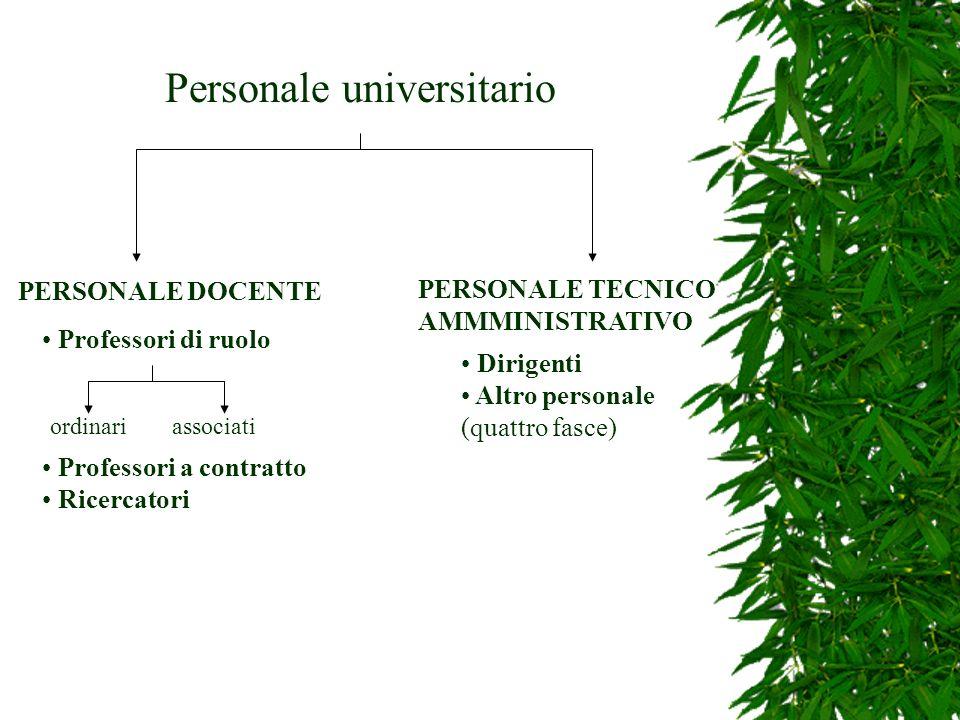 Personale universitario PERSONALE DOCENTE Professori di ruolo ordinariassociati Professori a contratto Ricercatori PERSONALE TECNICO AMMMINISTRATIVO D