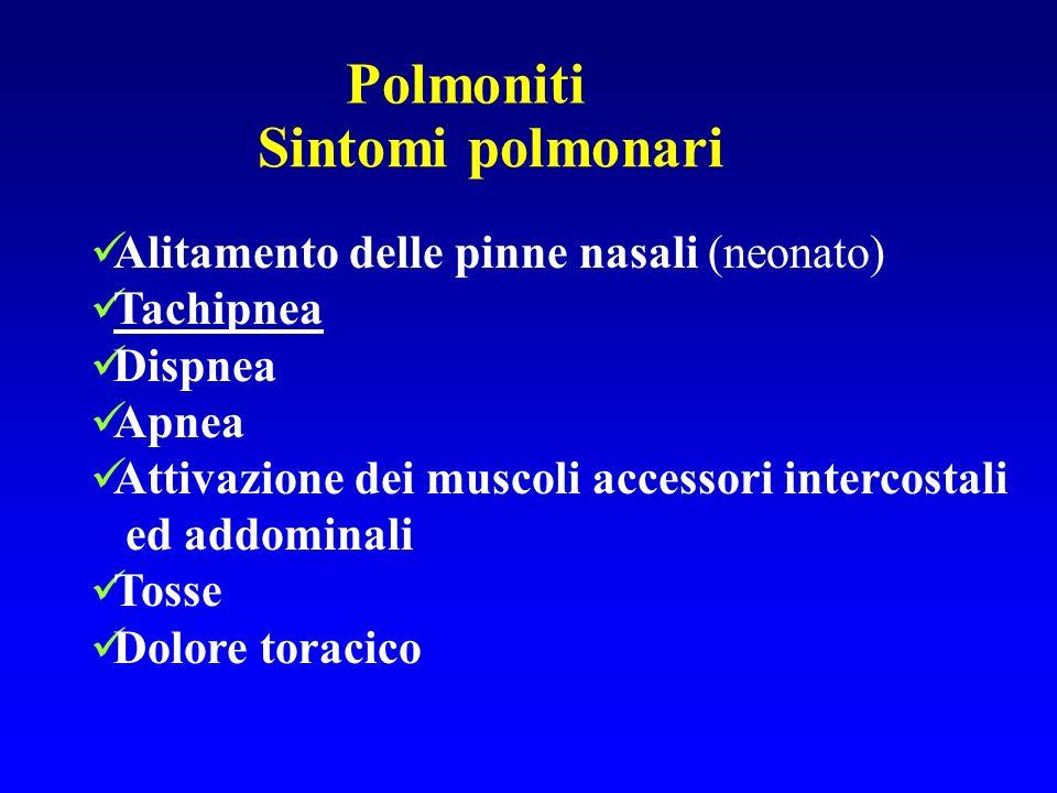 Polmoniti Sintomi polmonari Alitamento delle pinne nasali (neonato) Tachipnea Dispnea Apnea Attivazione dei muscoli accessori intercostali ed addomina