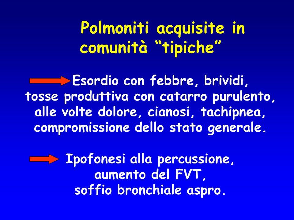 Polmoniti acquisite in comunità tipiche Esordio con febbre, brividi, tosse produttiva con catarro purulento, alle volte dolore, cianosi, tachipnea, co