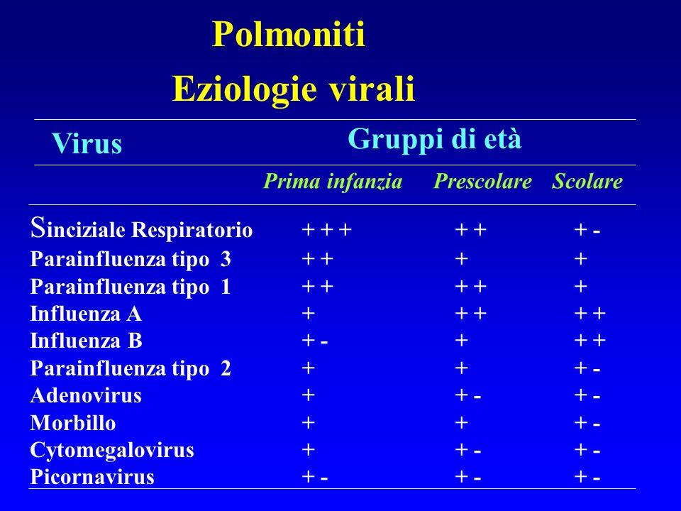 Polmoniti Eziologie batteriche rare Legionella pneumophila (aria condizionata) Branhamella catarrhalis Streptococcus gruppo A Francisella tularensis Clhamydia psittaci (esposizione ai pappagalli) Coxiella burneti (Febbre Q) Salmonella cholerae-suis