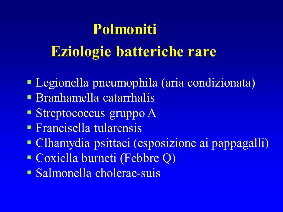 Polmoniti Eziologie batteriche rare Legionella pneumophila (aria condizionata) Branhamella catarrhalis Streptococcus gruppo A Francisella tularensis C