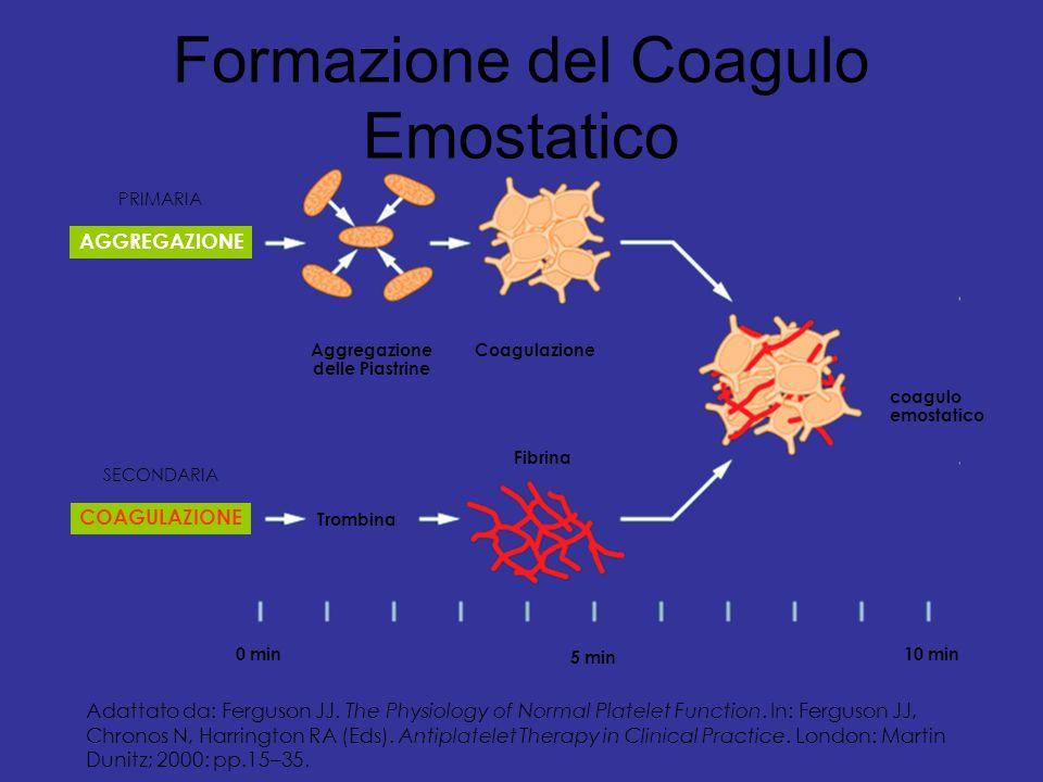 Formazione del Coagulo Emostatico Trombina AGGREGAZIONE Fibrina coagulo emostatico CoagulazioneAggregazione delle Piastrine 0 min10 min 5 min SECONDAR