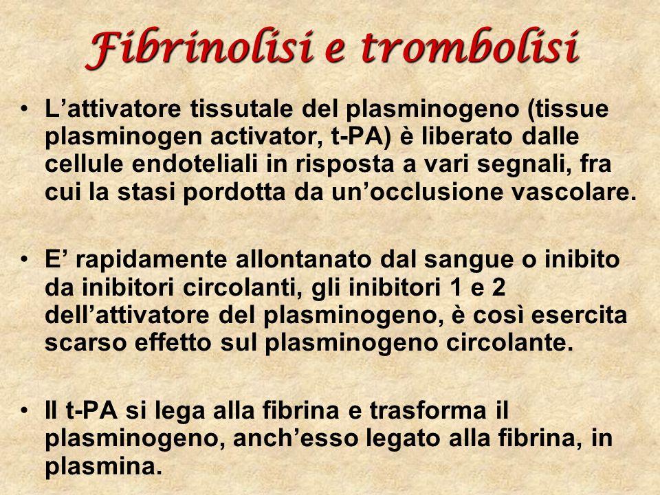 Fibrinolisi e trombolisi Lattivatore tissutale del plasminogeno (tissue plasminogen activator, t-PA) è liberato dalle cellule endoteliali in risposta