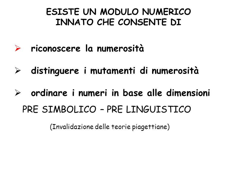 ESISTE UN MODULO NUMERICO INNATO CHE CONSENTE DI riconoscere la numerosità distinguere i mutamenti di numerosità ordinare i numeri in base alle dimensioni PRE SIMBOLICO – PRE LINGUISTICO (Invalidazione delle teorie piagettiane)