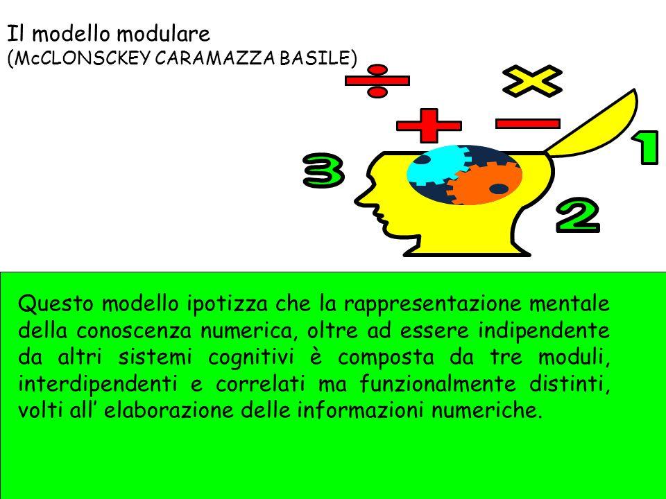 Il modello modulare (McCLONSCKEY CARAMAZZA BASILE) Questo modello ipotizza che la rappresentazione mentale della conoscenza numerica, oltre ad essere indipendente da altri sistemi cognitivi è composta da tre moduli, interdipendenti e correlati ma funzionalmente distinti, volti all elaborazione delle informazioni numeriche.
