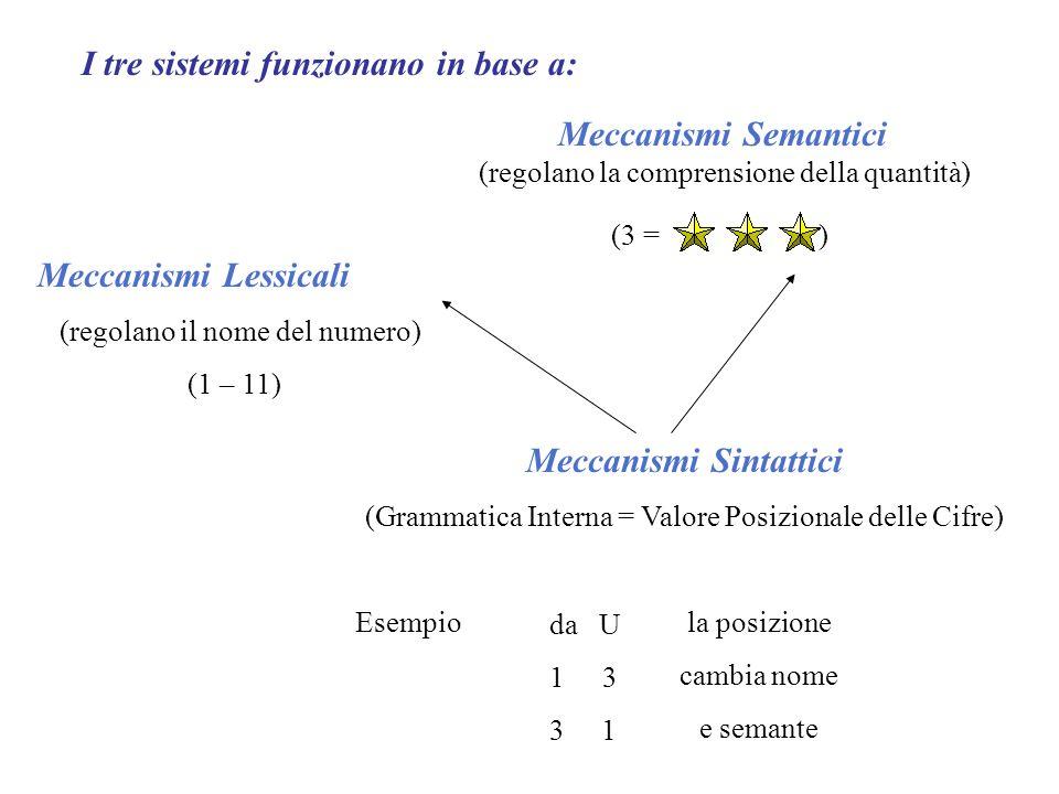 I tre sistemi funzionano in base a: Meccanismi Semantici (regolano la comprensione della quantità) (3 = ) Meccanismi Lessicali (regolano il nome del numero) (1 – 11) Meccanismi Sintattici (Grammatica Interna = Valore Posizionale delle Cifre) Esempio da U 13 3 1 la posizione cambia nome e semante