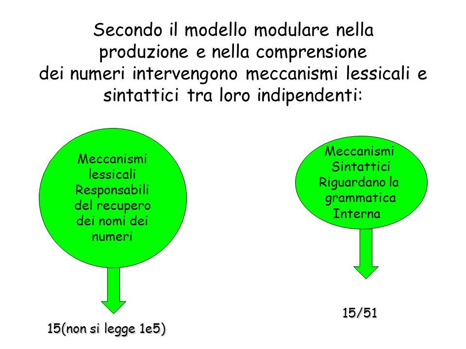 Secondo il modello modulare nella produzione e nella comprensione dei numeri intervengono meccanismi lessicali e sintattici tra loro indipendenti: Meccanismi lessicali Responsabili del recupero dei nomi dei numeri Meccanismi Sintattici Riguardano la grammatica Interna 15(non si legge 1e5) 15/51