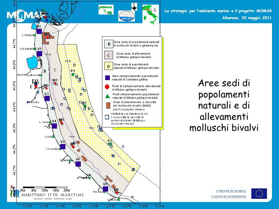 UNIONE EUROPEA UNION EUROPEENNE La strategia per lambiente marino e il progetto MOMAR Alberese, 20 maggio 2011 Aree sedi di popolamenti naturali e di