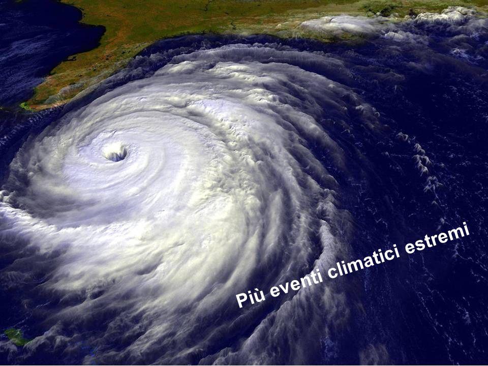 Partecipazione Pubblica www.transportlearning.net Più eventi climatici estremi