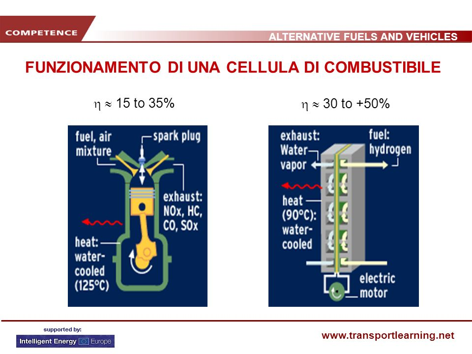 ALTERNATIVE FUELS AND VEHICLES www.transportlearning.net Cellula di combustibile per un bus passeggeri, MAN