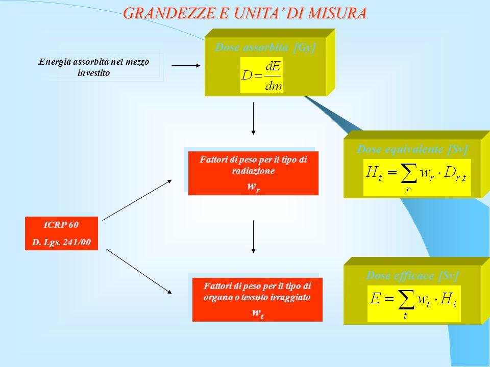 GRANDEZZE E UNITA DI MISURA Energia assorbita nel mezzo investito Dose assorbita [Gy]Dose equivalente [Sv]Dose efficace [Sv] Fattori di peso per il tipo di radiazione w r ICRP 60 D.