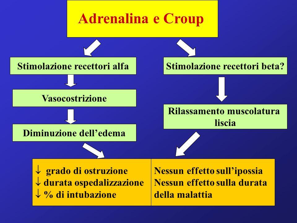 Adrenalina e Croup Stimolazione recettori alfa Vasocostrizione Diminuzione delledema Stimolazione recettori beta? Rilassamento muscolatura liscia grad
