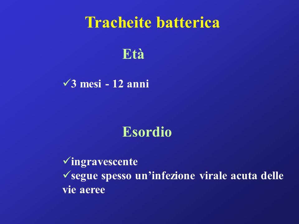 Tracheite batterica Età 3 mesi - 12 anni Esordio ingravescente segue spesso uninfezione virale acuta delle vie aeree