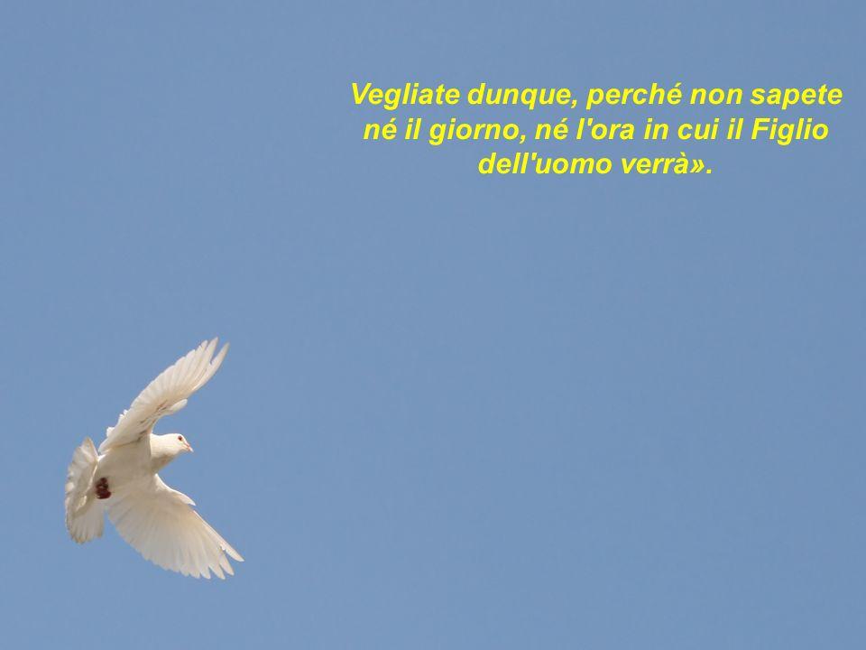 Vegliate dunque, perché non sapete né il giorno, né l'ora in cui il Figlio dell'uomo verrà».