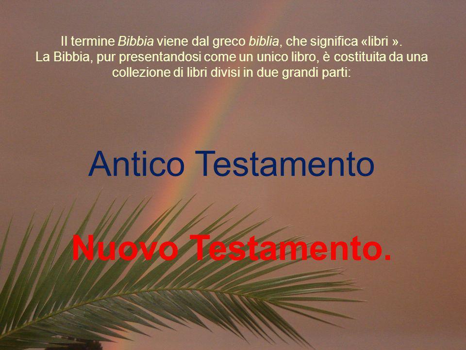 Il termine Bibbia viene dal greco biblia, che significa «libri ». La Bibbia, pur presentandosi come un unico libro, è costituita da una collezione di
