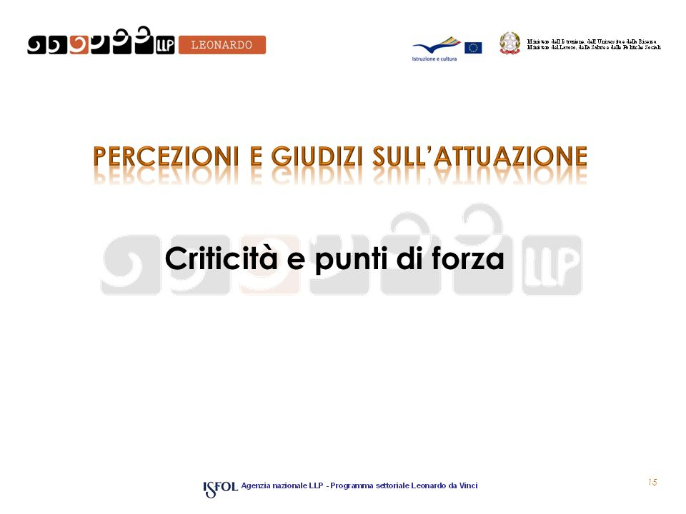 Criticità e punti di forza 15