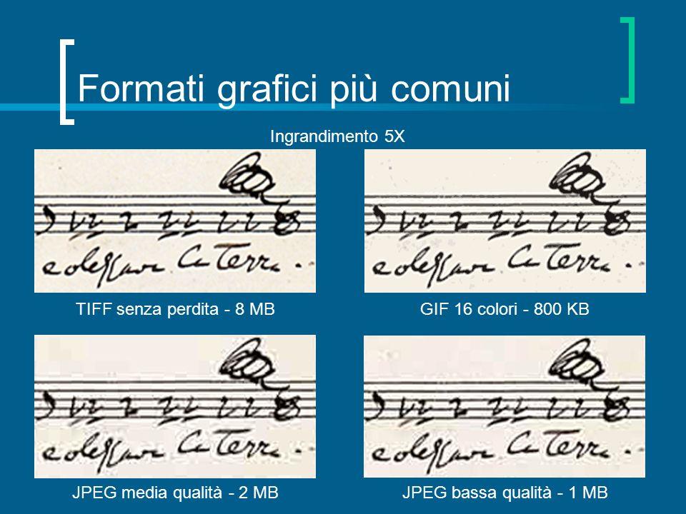 Formati grafici più comuni TIFF senza perdita - 8 MB JPEG media qualità - 2 MBJPEG bassa qualità - 1 MB Ingrandimento 5X GIF 16 colori - 800 KB