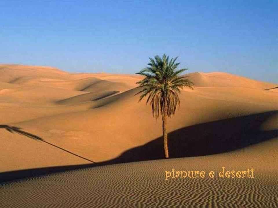 pianure e deserti