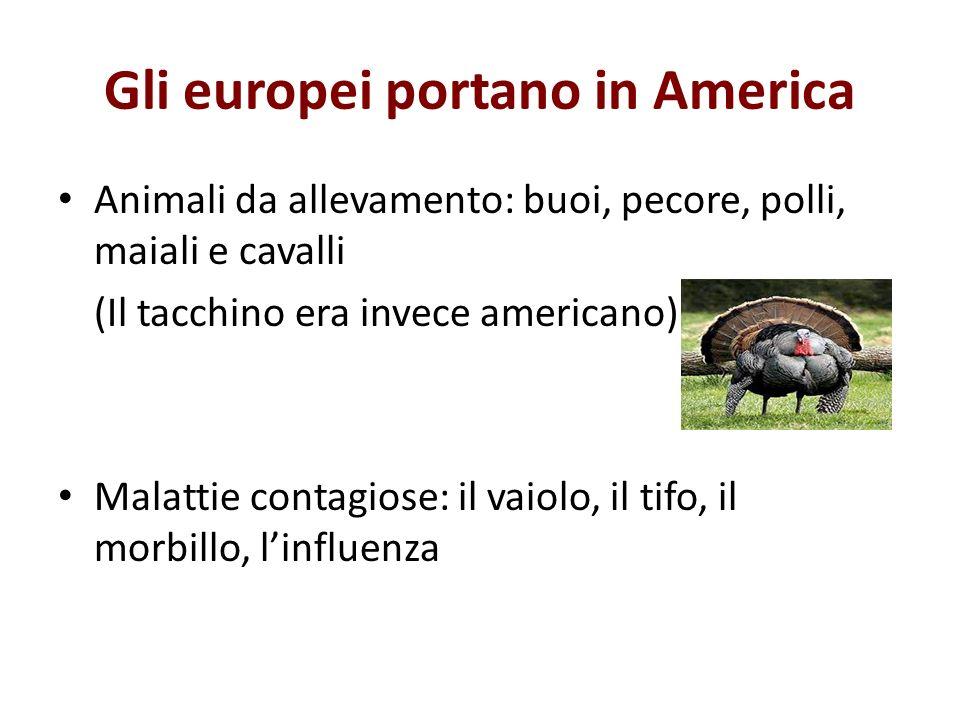 Gli europei portano in America Animali da allevamento: buoi, pecore, polli, maiali e cavalli (Il tacchino era invece americano) Malattie contagiose: i