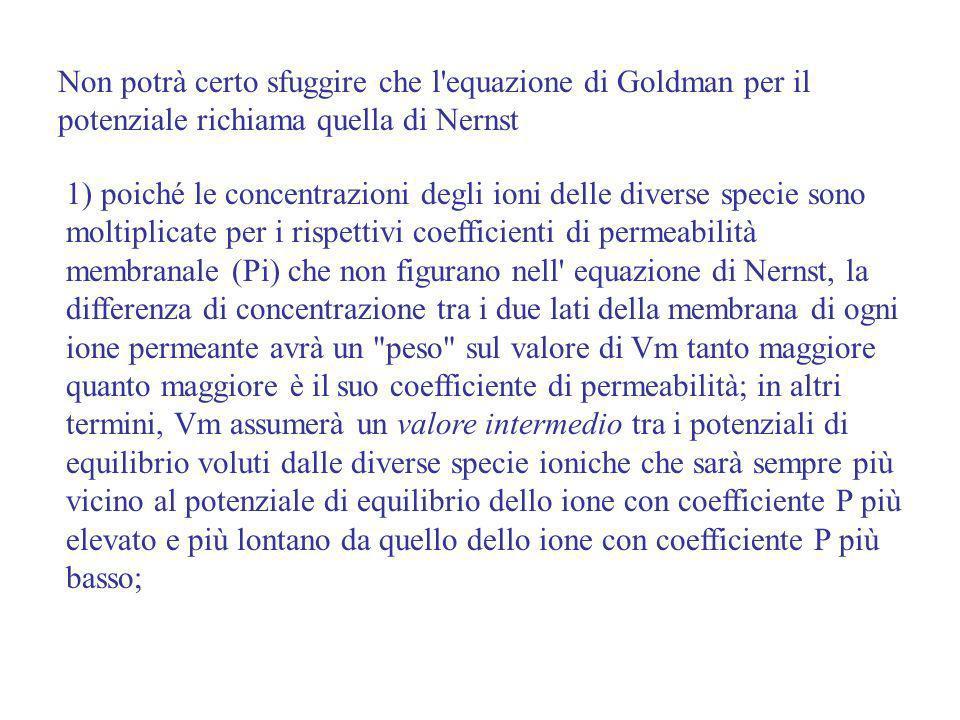 Non potrà certo sfuggire che l'equazione di Goldman per il potenziale richiama quella di Nernst 1) poiché le concentrazioni degli ioni delle diverse s