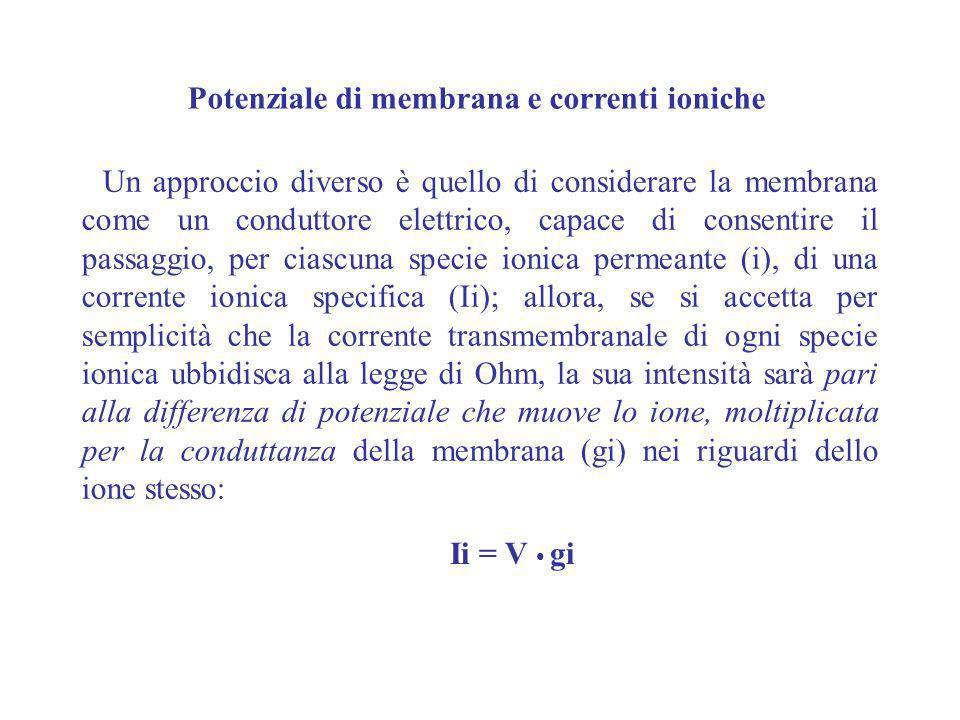 Un approccio diverso è quello di considerare la membrana come un conduttore elettrico, capace di consentire il passaggio, per ciascuna specie ionica p