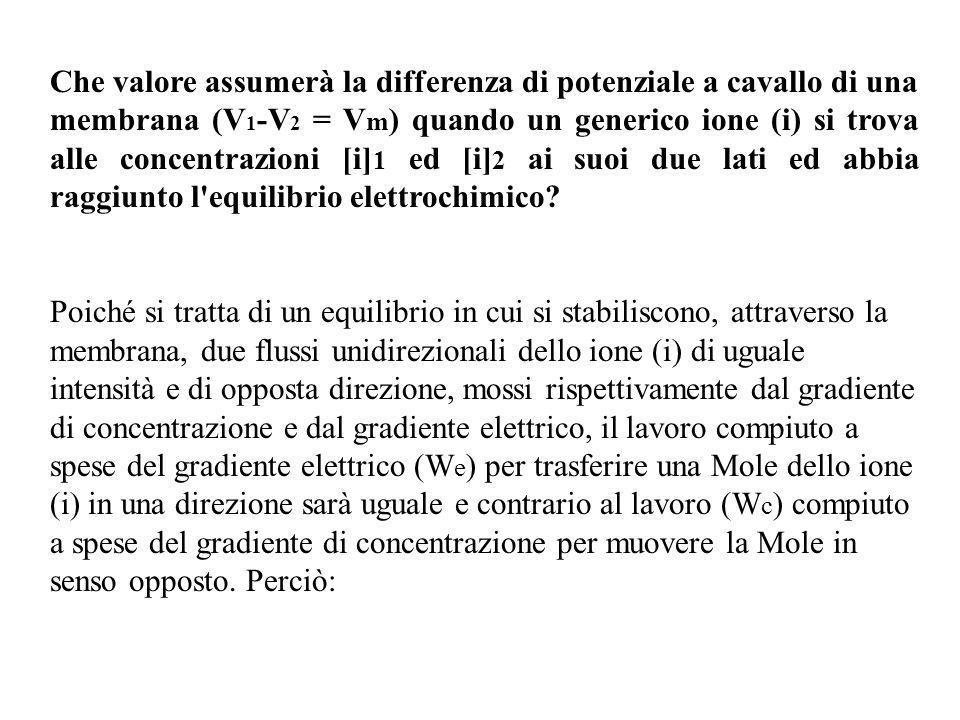 W e = -W c e quindi W e + W c = 0 D altro canto il lavoro We, per la definizione di potenziale elettrico, sarà W e =zi F V m ove z i è la valenza dello ione (i), F la costante di Faraday W c invece sarà: W c = RT { ln[i] 1 - ln[i] 2 } ove R è la costante dei gas, T la temperatura assoluta, e ln[i] 1 e ln[i] 2 sono i logaritmi naturali delle concentrazioni dello ione (i) ai due lati della membrana.