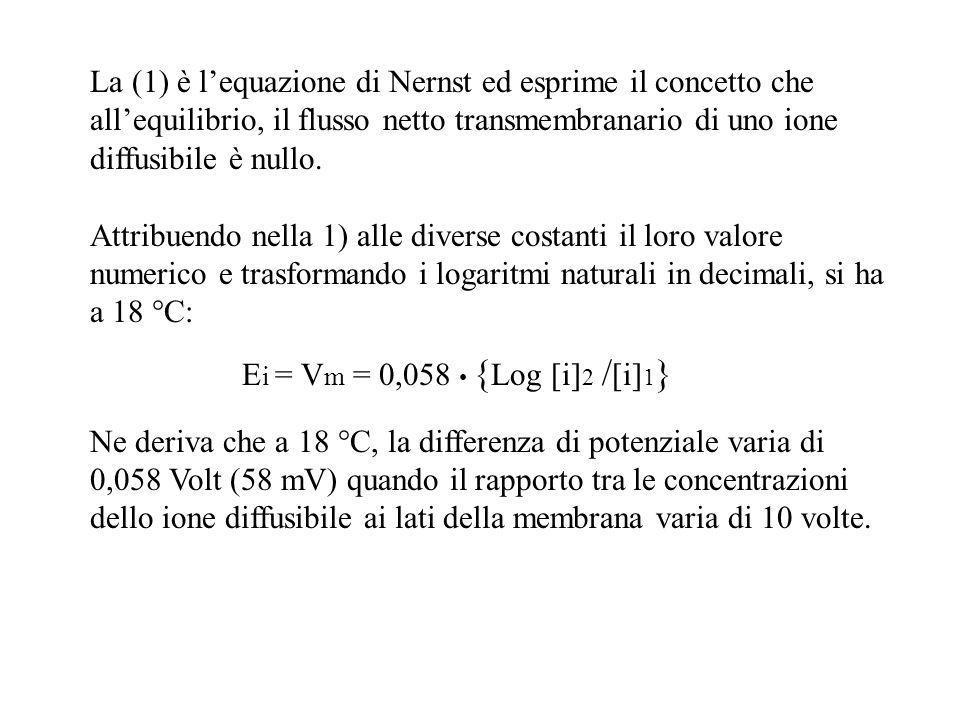 La (1) è lequazione di Nernst ed esprime il concetto che allequilibrio, il flusso netto transmembranario di uno ione diffusibile è nullo. Attribuendo