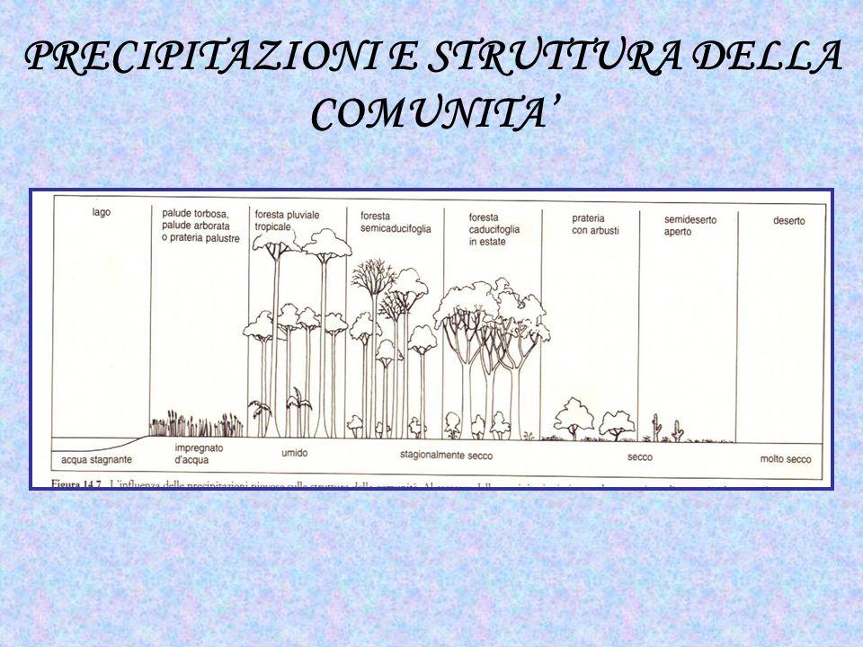 PRECIPITAZIONI E STRUTTURA DELLA COMUNITA