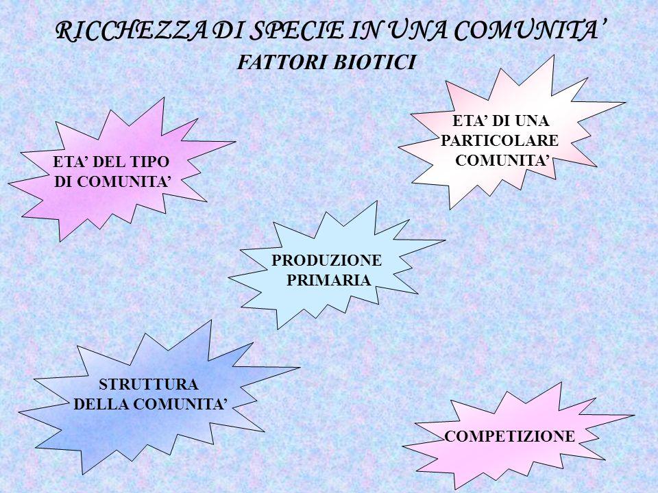 ETA DI UNA PARTICOLARE COMUNITA RICCHEZZA DI SPECIE IN UNA COMUNITA FATTORI BIOTICI ETA DEL TIPO DI COMUNITA PRODUZIONE PRIMARIA STRUTTURA DELLA COMUN