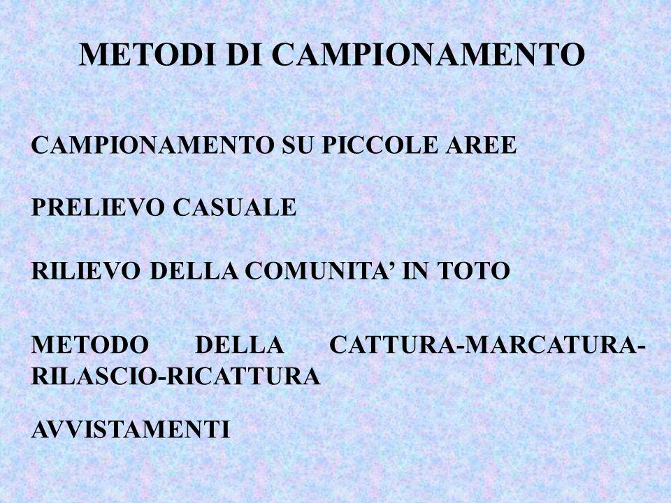 CAMPIONAMENTO SU PICCOLE AREE METODI DI CAMPIONAMENTO PRELIEVO CASUALE RILIEVO DELLA COMUNITA IN TOTO METODO DELLA CATTURA-MARCATURA- RILASCIO-RICATTU