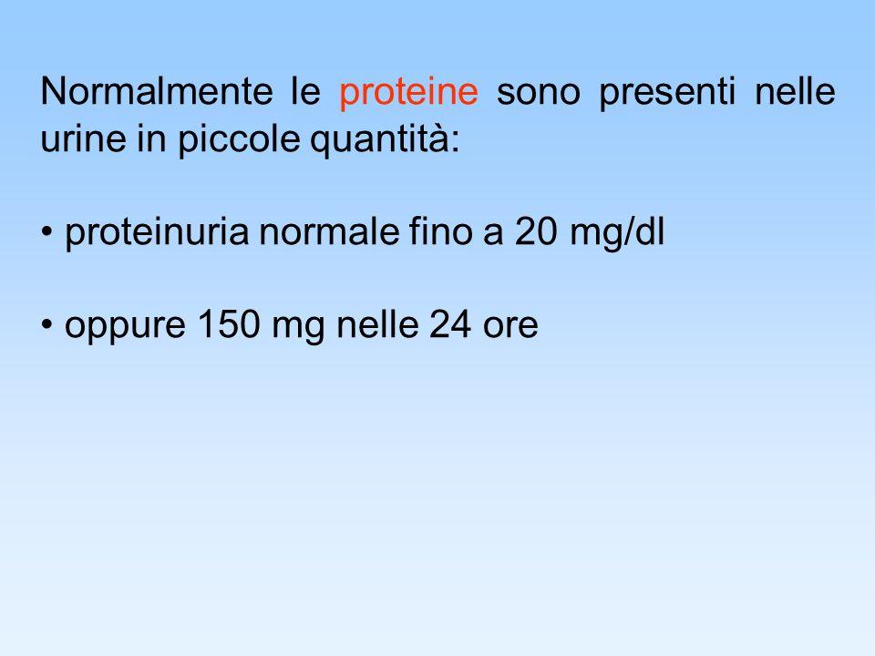 Normalmente le proteine sono presenti nelle urine in piccole quantità: proteinuria normale fino a 20 mg/dl oppure 150 mg nelle 24 ore