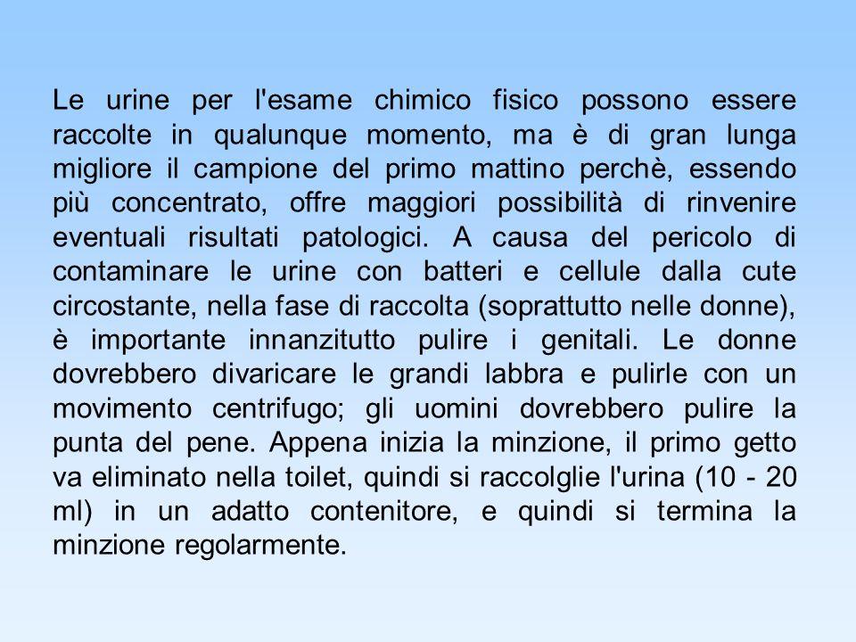Il Rene e lAlbumina Attraverso i due reni circolano ~0,65 L/min di plasma (936 L/die).
