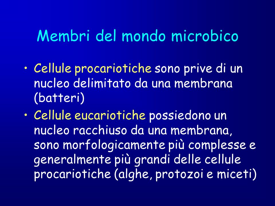 Membri del mondo microbico Cellule procariotiche sono prive di un nucleo delimitato da una membrana (batteri) Cellule eucariotiche possiedono un nucle