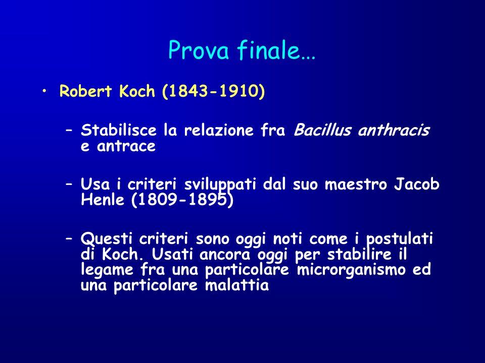 Prova finale… Robert Koch (1843-1910) –Stabilisce la relazione fra Bacillus anthracis e antrace –Usa i criteri sviluppati dal suo maestro Jacob Henle
