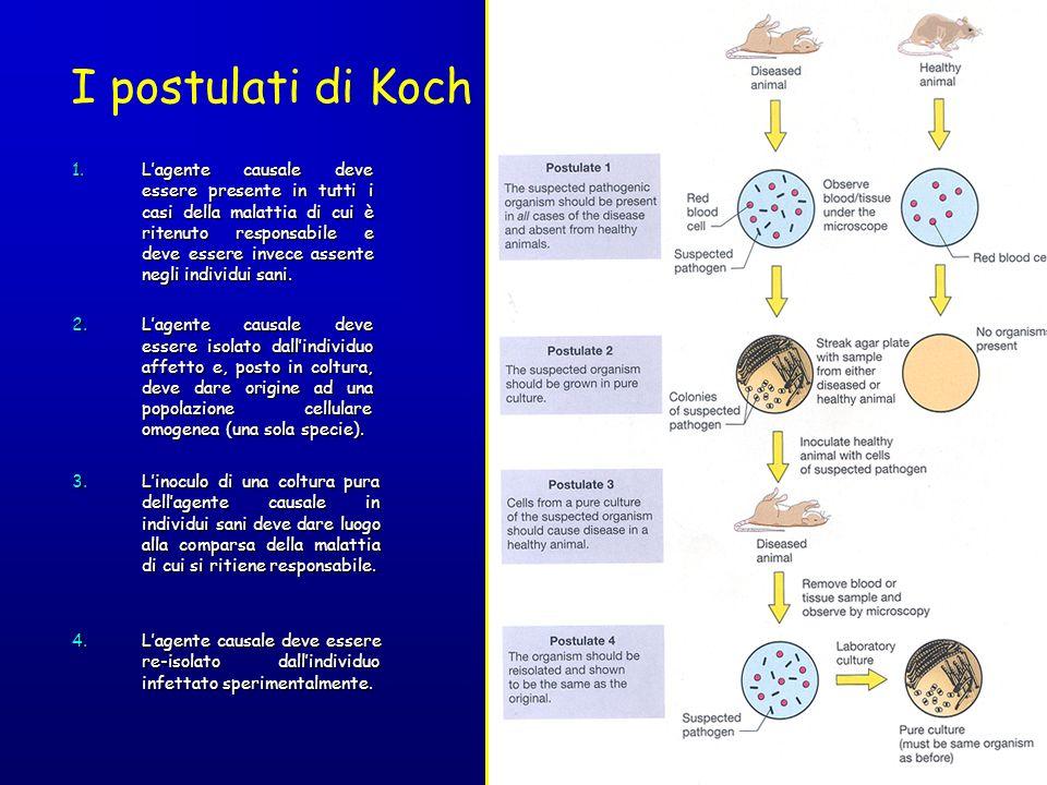I postulati di Koch 1.Lagente causale deve essere presente in tutti i casi della malattia di cui è ritenuto responsabile e deve essere invece assente
