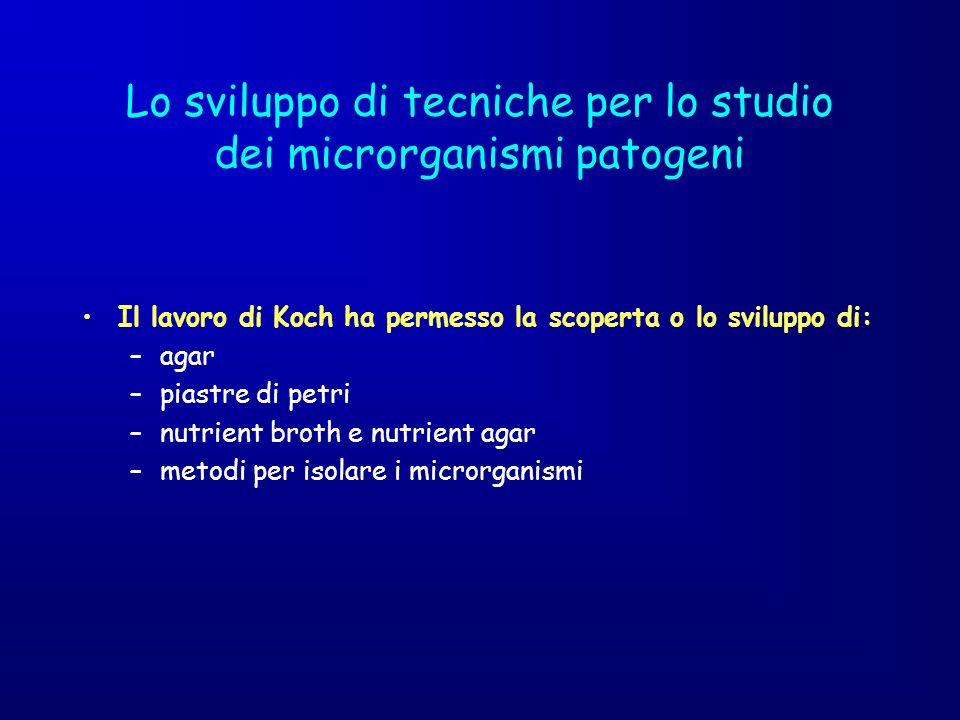 Lo sviluppo di tecniche per lo studio dei microrganismi patogeni Il lavoro di Koch ha permesso la scoperta o lo sviluppo di: –agar –piastre di petri –