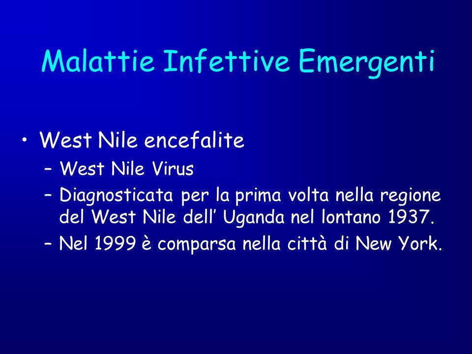 West Nile encefalite –West Nile Virus –Diagnosticata per la prima volta nella regione del West Nile dell Uganda nel lontano 1937. –Nel 1999 è comparsa