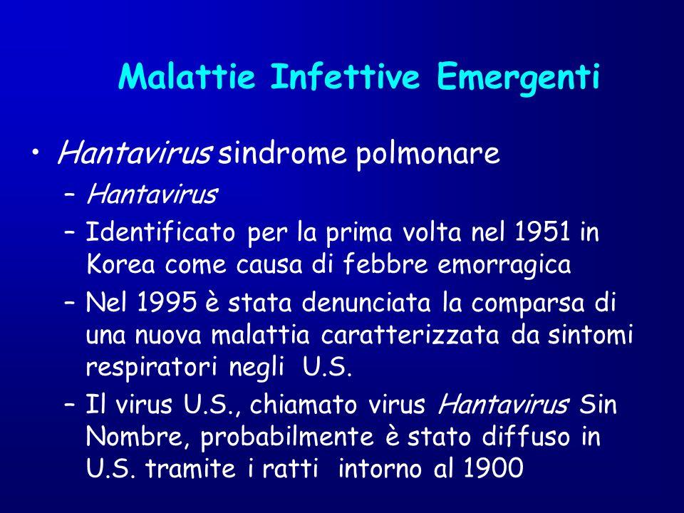 Hantavirus sindrome polmonare –Hantavirus –Identificato per la prima volta nel 1951 in Korea come causa di febbre emorragica –Nel 1995 è stata denunci