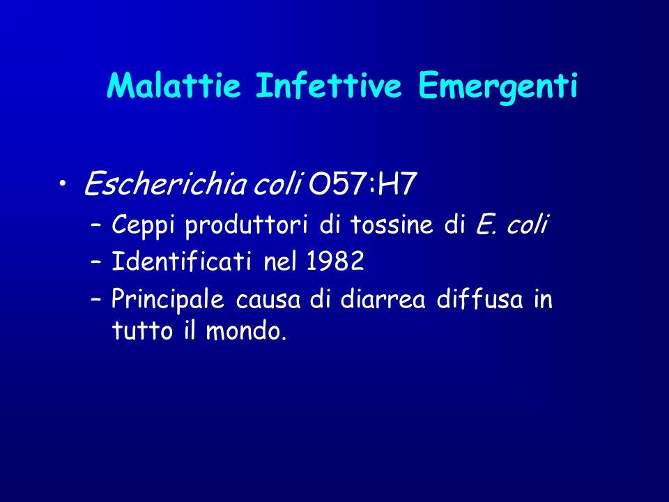 Escherichia coli O57:H7 –Ceppi produttori di tossine di E. coli –Identificati nel 1982 –Principale causa di diarrea diffusa in tutto il mondo. Malatti