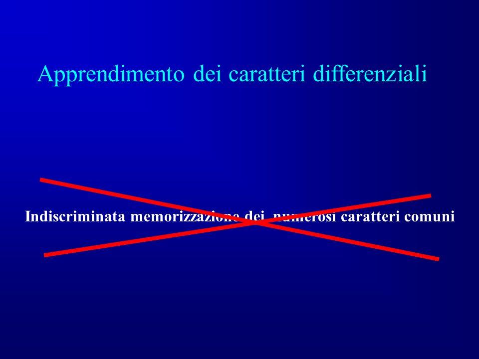 Apprendimento dei caratteri differenziali Indiscriminata memorizzazione dei numerosi caratteri comuni