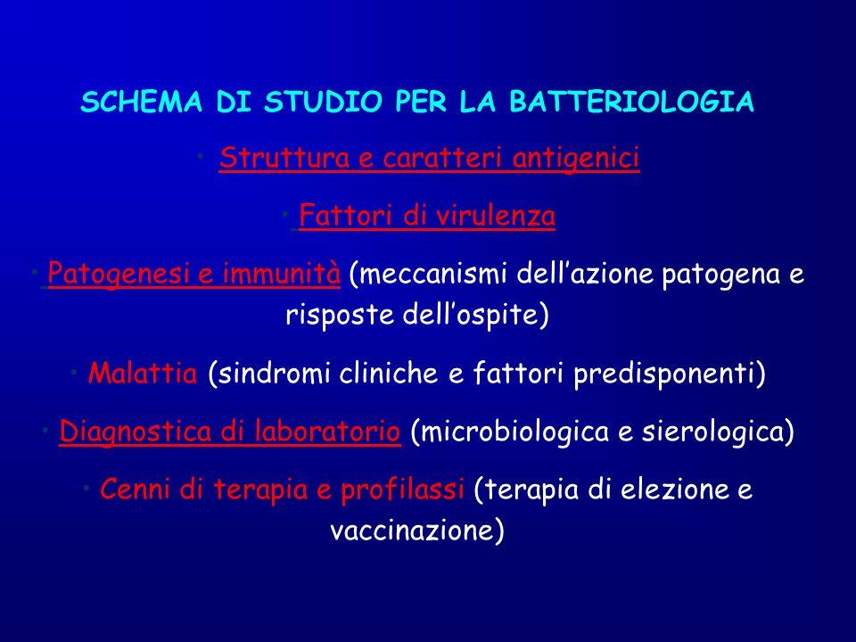 SCHEMA DI STUDIO PER LA BATTERIOLOGIA Struttura e caratteri antigenici Fattori di virulenza Patogenesi e immunità (meccanismi dellazione patogena e ri