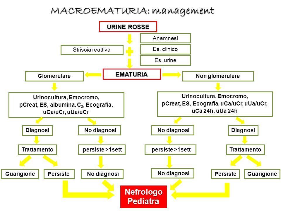 URINE ROSSE Striscia reattiva Es. clinico EMATURIA Es. urine Anamnesi Non glomerulareGlomerulare Trattamento GuarigionePersiste Urinocultura, Emocromo